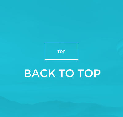 BACK TO TOP TOP